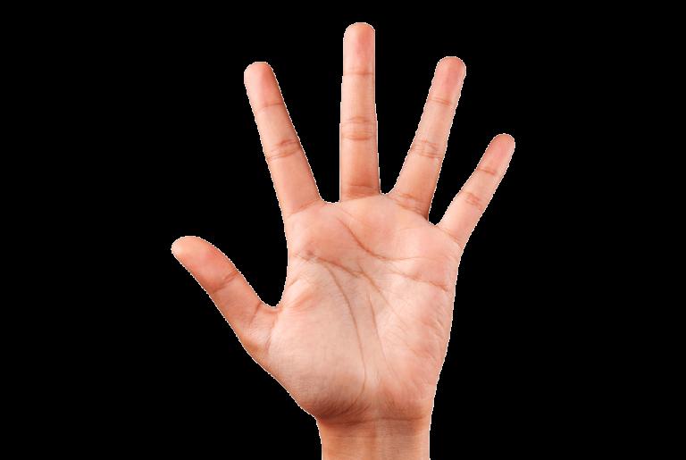 5 Finger