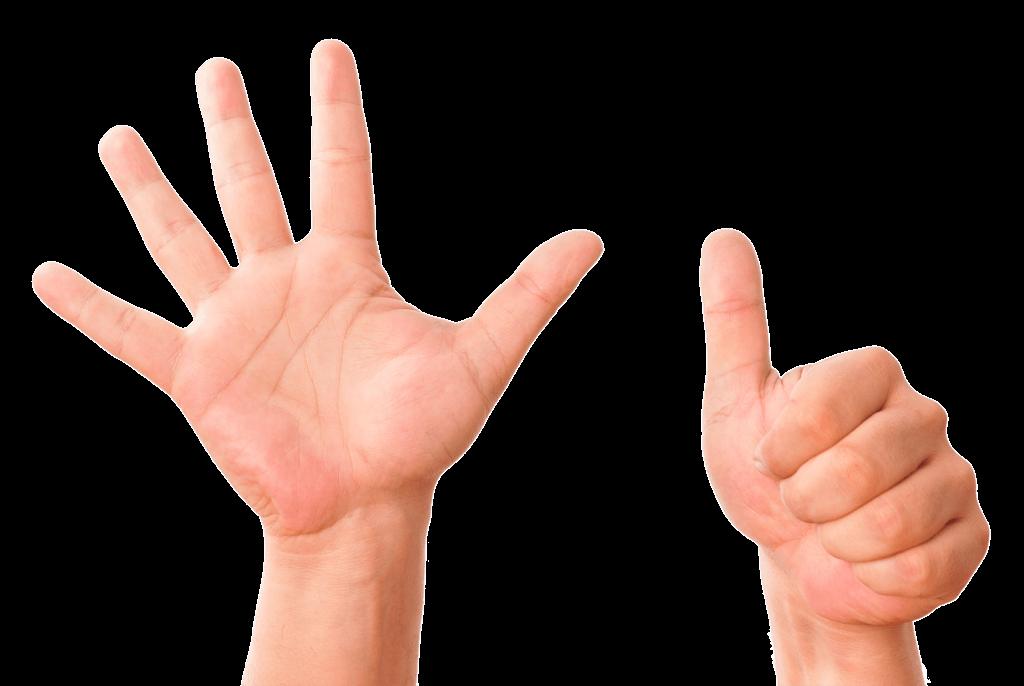 6 Finger