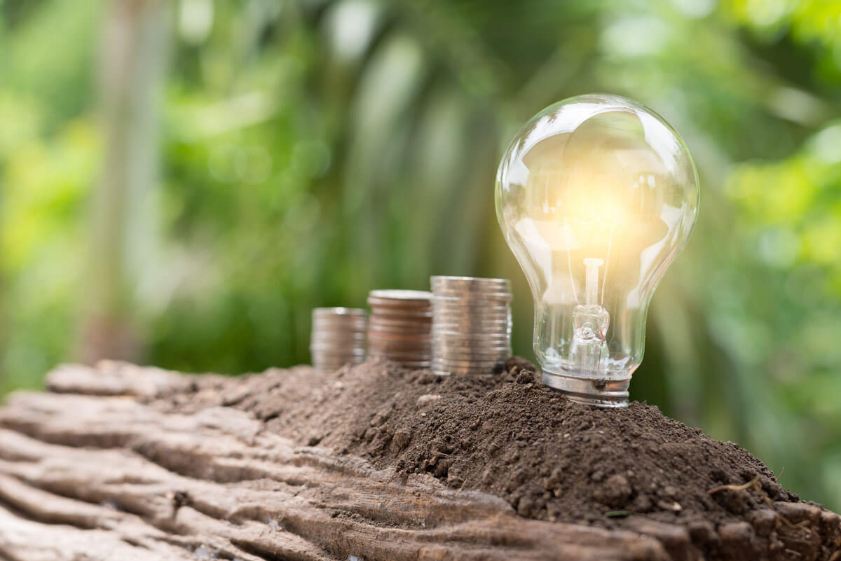 Light bulb and money on the ground at green Natural background. Natural energy and Costs reduction concept
